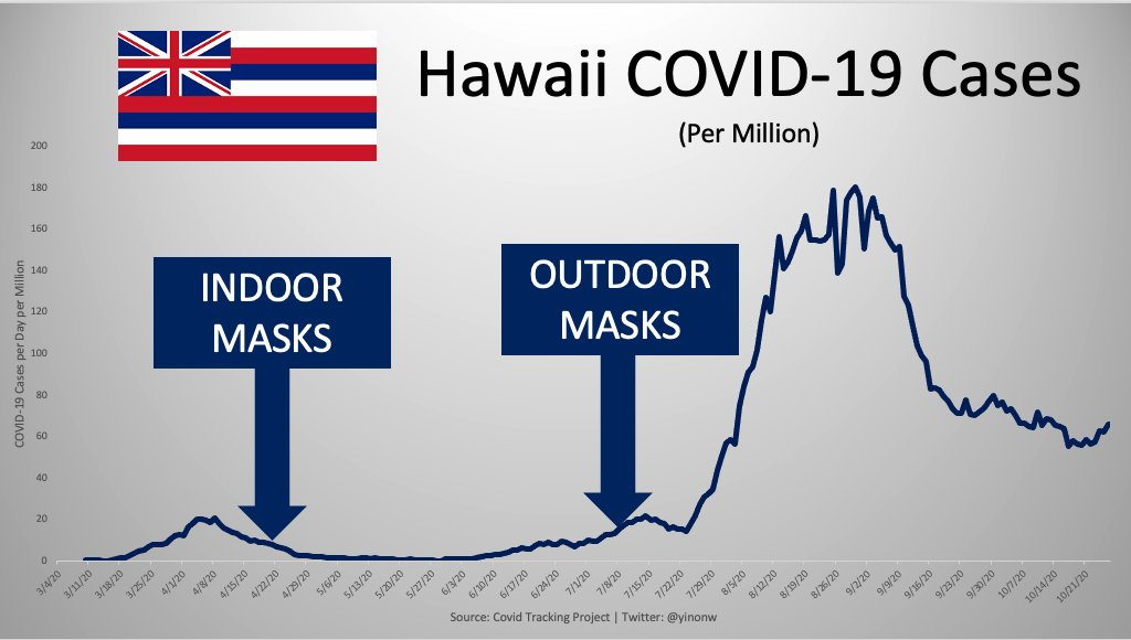Are Face Masks Effective? The Evidence. Masks-hawaii-1